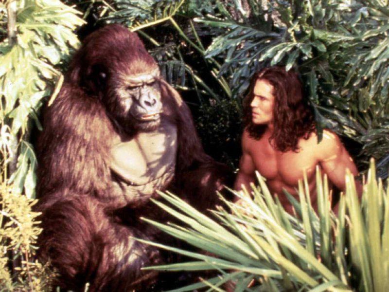 Secvemte_film_Tarzan